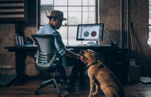 ganar dinero por internet como freelancer